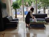 天津鲜花 绿植租赁公司