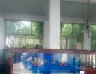 专业定制生态鱼缸