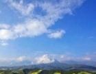 青海湖旅游,王师傅 旅游包车