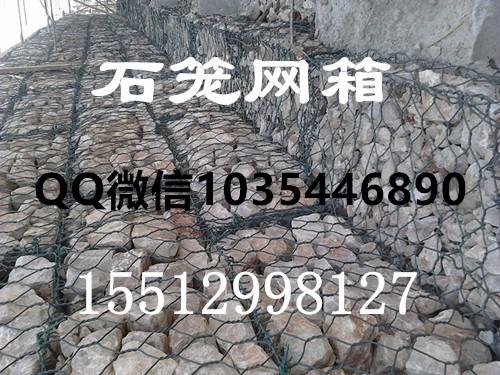 794a99a15003ab6c51f16a29b062ea77.jpg
