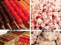 新乡老城餐饮技术培训 冰糖葫芦培训