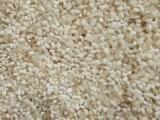玉米收購企業 常年求購玉米高粱大豆棉粕次粉蕎麥等原料