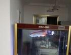 观赏鱼价格1500