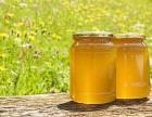 进口蜂蜜通关最快几天