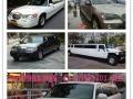 佛山有道名车:提供专业婚车租赁,商务接待,商业庆典