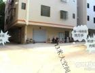 南沙 南沙旧镇塘坑村 1室 2厅 43平米 整租