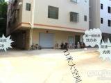 南沙 南沙舊鎮塘坑村 1室 2廳 43平米 整租