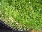 北京仿真草坪哪里卖草坪厂家