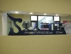 杭州美人鱼广告,平面设计 VI设计 广告策划