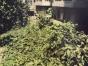 湘江翡翠城5楼共6楼140平方4室2厅2卫月租2000元