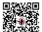 2016年翔龙武术搏击俱乐部跆拳道开班