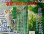 百鸟主题展出租厂家珍稀鸟类动物出租公司百鸟园布置