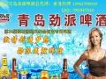 【青岛劲派啤酒-济宁】招商官网/招商费用/项目详情