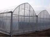太原 玻璃温室 阳光板温室 薄膜温室 温室公司 建设 厂家