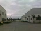 港口民营科技园 厂房 2000平米可分租