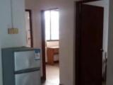 金菊花园 1600元 3室2厅1卫 普通装修,少有的低价