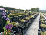 荆州市公墓有些