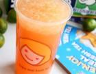 快乐柠檬饮品冰淇淋加盟 一个小档口 月入也能过万