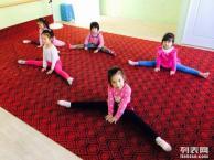 沈阳专业儿童舞蹈培训,少儿舞蹈软功技巧