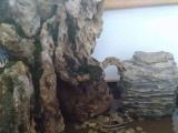 奇石盆景价格400
