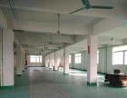 南区国道边标准厂房4楼2400平方带货梯水电齐出租