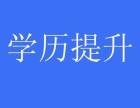 2019,成教秋季火热招生中