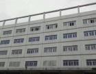 福永白石厦1楼仓库1300平方 大小可分