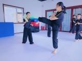 4至18岁散打,拳击,咏春拳