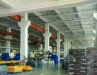 虎门北面推出1300平米厂房招租、临主干道