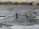 河源源城清理化糞池 清掏糞池