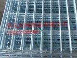 现货供应电焊网片,不锈钢电焊网片,镀锌电焊网片,黑丝网片1