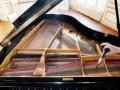 钢琴调律调音 钢琴维修 琴弦弦轴更换 钢琴补漆抛光