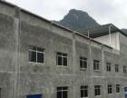 南山标准框架厂房出租