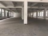 出租老余杭中泰工业园5000平方米厂房