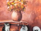正规猫舍售高品质纯血统 美短猫 签署质保 对外借配