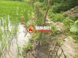 家禽养殖防护黑色塑料网 厂家直销