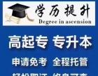 成人高考、网络教育