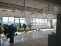 会展中心纯写字楼绿地中心270交通便利繁华地段