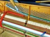 南京钢琴调律调音 资深钢琴调律师 技术精湛