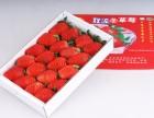 成都四季草莓批发配送 货员长期稳定不断货