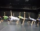 荣昌成人舞蹈培训各种流行舞在培训