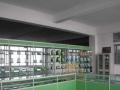厦门精品展柜全新定制 玻璃柜 药品柜批发