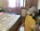 舟山西园新村 2室 1厅 (朝南)+车棚,可拎包入住(个人)
