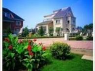 虹口外墙清洗 别墅 家庭保洁 地面清洗 地毯清洗