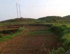 衡南 松江镇 土地 160亩,寻求种养方便合作伙伴,也可