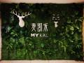 仿真植物墙绿植墙 仿真树 花墙 绿雕 绿植景观设计