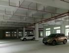 石碣水南村一楼标准厂房780平方