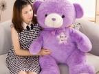 紫色薰衣草泰迪熊毛绒玩具,女生生日礼物
