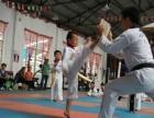 昆明大成华威搏击俱乐部常年开设散打 搏击 少儿跆拳道
