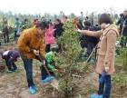 上海植树活动预定娱乐拓展电子定向各类植树活动